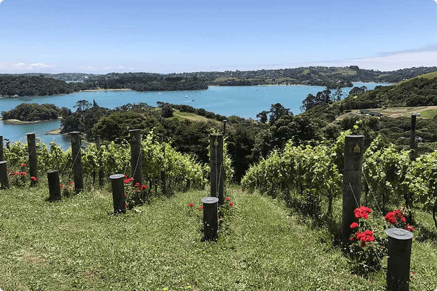 View of Putaki Bay from Te Whau vineyard and restaurant Waiheke Island